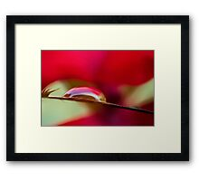 All Alone in the Red Zone Framed Print