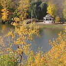 Gazebo in Fall by caybeach