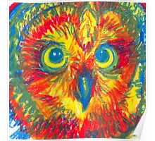 primary color owl Poster