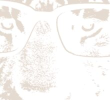 Hipster Tiger With Glasses Sticker