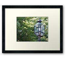 Street Lamp in Back Bay Framed Print