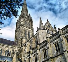 Salisbury Cathedral by naturelover