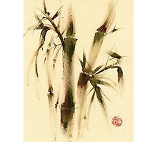 """Awareness"" Sumi-e bamboo painting on paper Photographic Print"