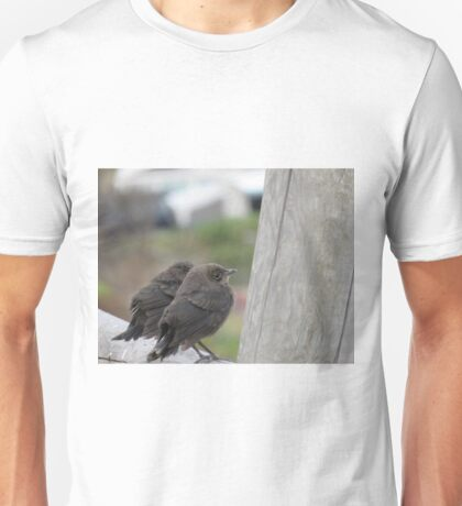 Two song birds Unisex T-Shirt
