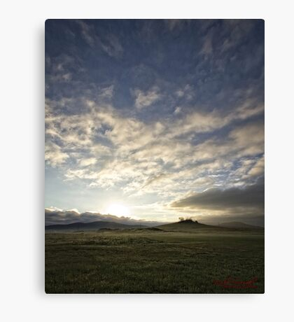 Early Morning around Canberra Race Course (ACT/Australia) (2) Canvas Print