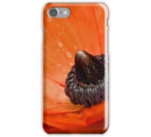 Dramatic blossom after the rain iPhone Case/Skin
