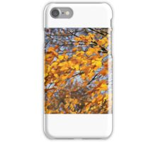 Wind Through The Leaves iPhone Case/Skin
