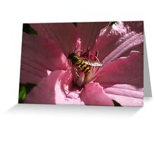 Bee on Pink Clematis Greeting Card