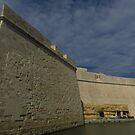 Fort St Angelo, Malta  by wiggyofipswich
