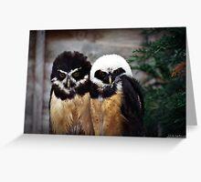 Baby B&W Owlets Greeting Card