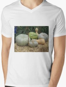 Pumpkin Patch Mens V-Neck T-Shirt