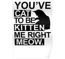 YOU'VE CAT TO BE KITTEN ME RIGHT MEOW TSHIRT Funny Animal Lovers TEE Cats Feline Poster