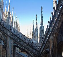 Italy. Milan. Duomo. On the Roof. by vadim19