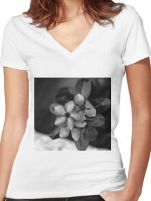 PERIWINKLE Women's Fitted V-Neck T-Shirt