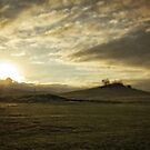 Early Morning around Canberra Race Course (ACT/Australia) (4) by Wolf Sverak