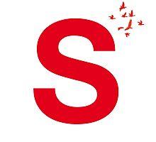 Typography, Font, S, Alphabet, Letter Photographic Print