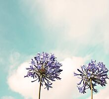 Reach for the Sky by BrookeRyanPhoto