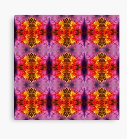 Brush Red (VN.409) Canvas Print