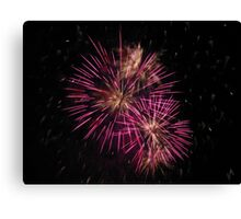 Two pink fireworks Canvas Print
