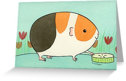 Tri-Color Guinea-pig with a Slice of Cucumber by Zoe Lathey