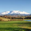 Skiddaw And The River Derwent by Jamie  Green