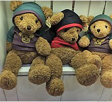 Teddy Bears to cuddle Photographic Print