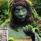 The Mermaid Fountain by Scott Mitchell