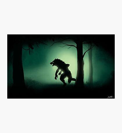 Midnight Stalk Photographic Print