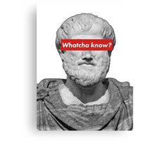 Aristotle - Whatcha know? Canvas Print