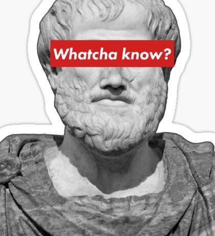 Aristotle - Whatcha know? Sticker
