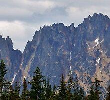 North Cascades by Randy Richards