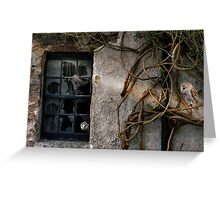The Haunting of Old Places. Greeting Card