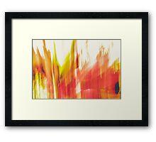 Dazzling  Delight Framed Print
