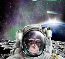 Space Monkey by raidenhiro