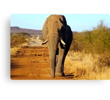 Large as Life Canvas Print