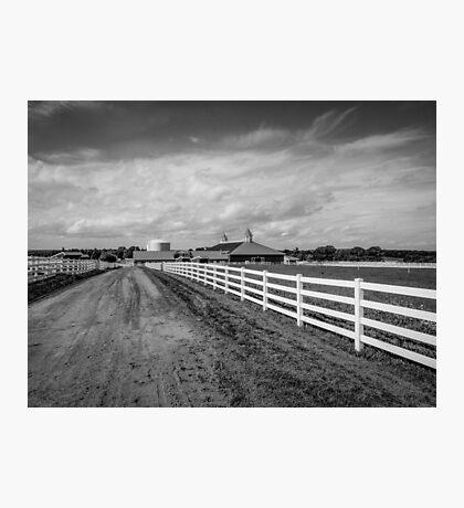 Pineland Farms Photographic Print