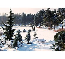 Snow Bench for Us Photographic Print
