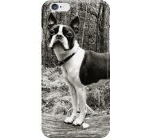 Meryl the Boston Terrier iPhone Case/Skin