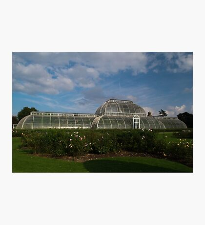 Green House in London's Kew Garden Photographic Print
