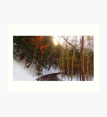 Snowy Trail Art Print