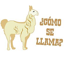 Como Se Llama?  What is your name? Photographic Print