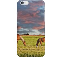 Sunrise over palomino mare and foal iPhone Case/Skin