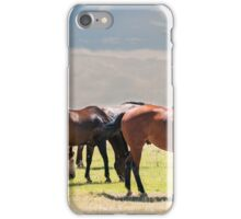 Horses grazing on open range prairie in Colorado iPhone Case/Skin