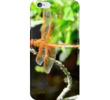 here there be dragons... iPhone Case/Skin
