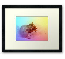 Squirrel in Winter Framed Print