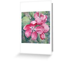 Flower of Crab-apple Greeting Card