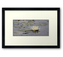 The lotus flower of Bethesda Fountain Framed Print