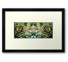 Cycle 3 - Summer Framed Print