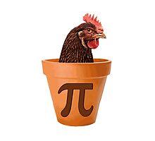 Chicken Pot Pi  Photographic Print