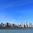 The Chicago Skyline by Adam Kuehl